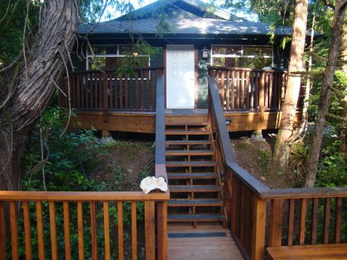 Tofino Forest View Cabin by Cox Bay Photo