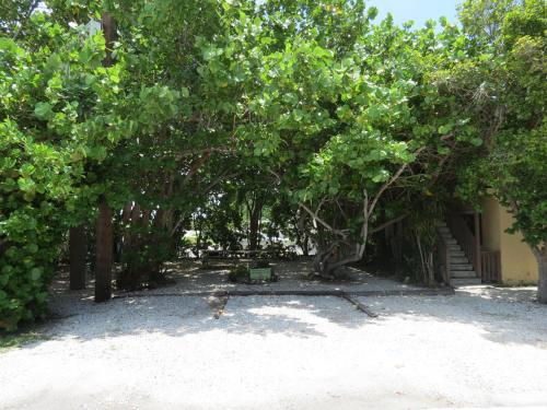 Ed & Ellen's Lodgings Key Largo Photo