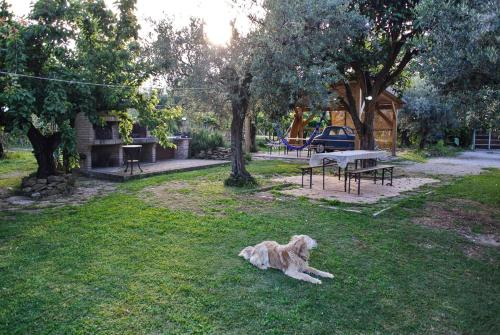 Bed & Breakfast B&B Dei Transumanti