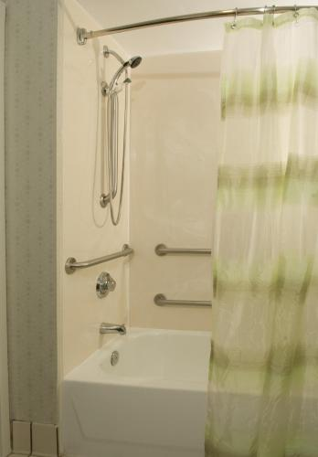 SpringHill Suites by Marriott Orlando Convention Center photo 3
