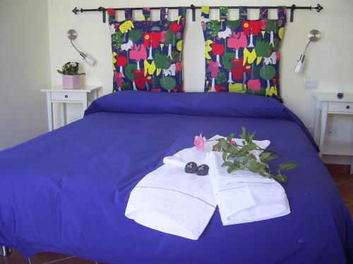 Bed & Breakfast Casa Falcone B&B