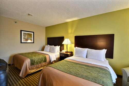Comfort Inn & Suites Airport Clearwater Photo