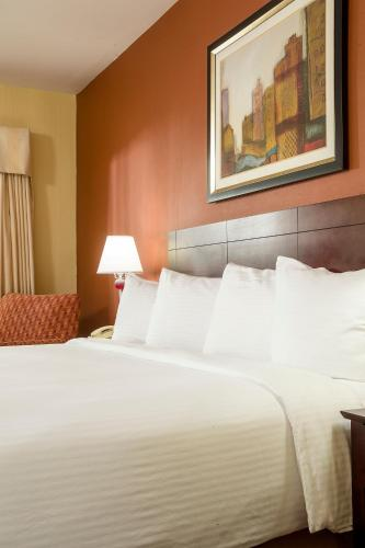 Best Western University Hotel Boston, Boston