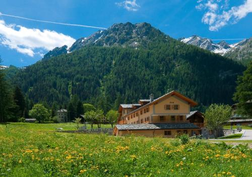 Galleria foto Apartments Fridau Residence & Wellness prezzi e recensioni Valle d'Aosta - Gressoney-Saint-Jean