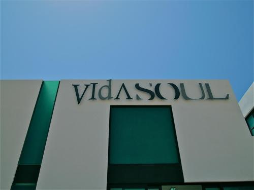 Vidasoul Photo