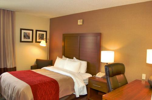 Comfort Inn Latham/Albany North Photo