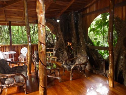 Topos Tree House Photo