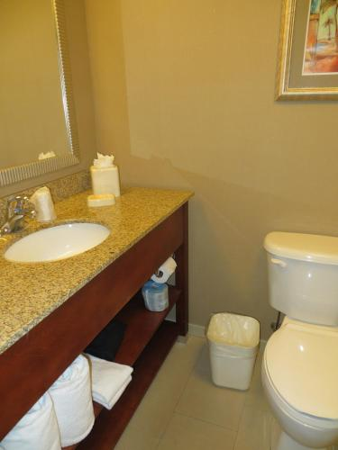 Holiday Inn Fort Myers Airport-Town Center Photo