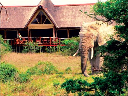 Bush Lodge Photo