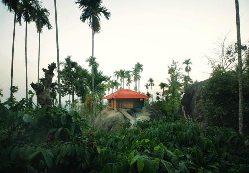 Wayanad Homestays Where You Wake Up To The Smell Of Coffee