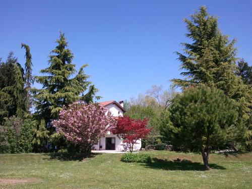Al Campo Di Sotto Bed & Breakfast
