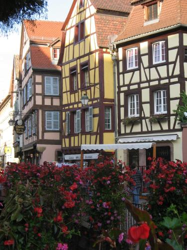 gite au coeur de colmar la commanderie in colmar france lonely planet. Black Bedroom Furniture Sets. Home Design Ideas