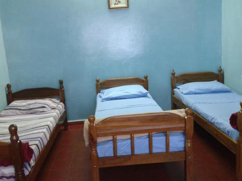 Hummingbird Hostel Photo