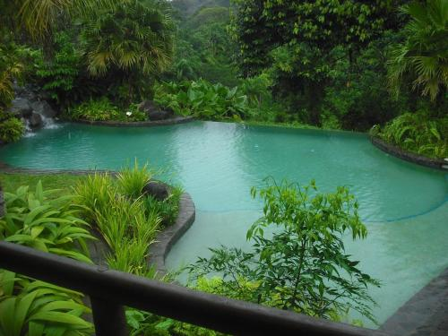 Sarapiquis Rainforest Lodge Photo