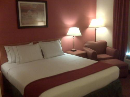Holiday Inn Express Williamston Photo