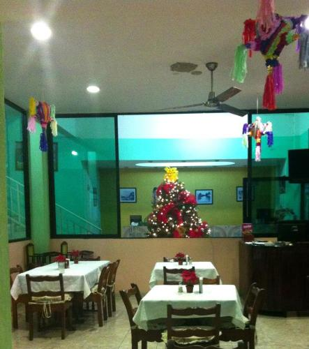 Hotel Tuxtepec Photo