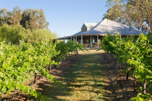 Spicers Vineyards Estate, Hunter Valley, Australien, picture 31