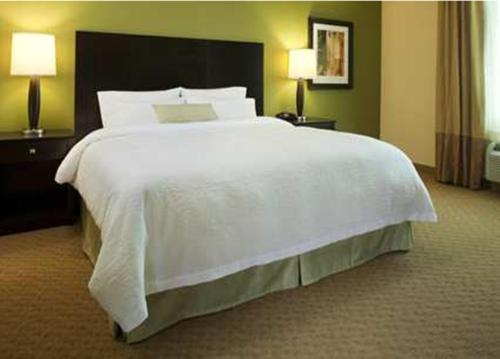 Hampton Inn Augusta/gordon Highway