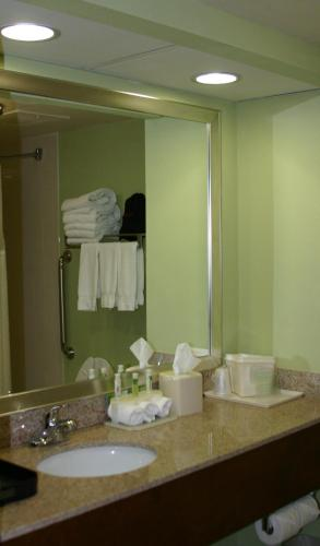 Holiday Inn Express Greenville Photo