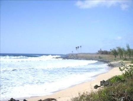 Molokai Blue Goose Bed and Breakfast Photo
