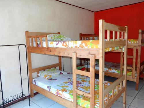 Sloth Backpackers Bed & Breakfast Photo