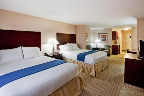 Holiday Inn Express Hotel & Suites McDonough Photo