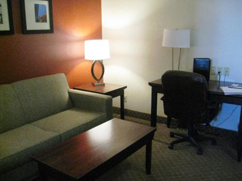 Comfort Inn & Suites Airport South Photo