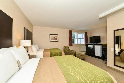 Comfort Inn Halifax Photo