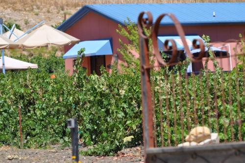 Villa Vino at Poalillo Vineyards Photo