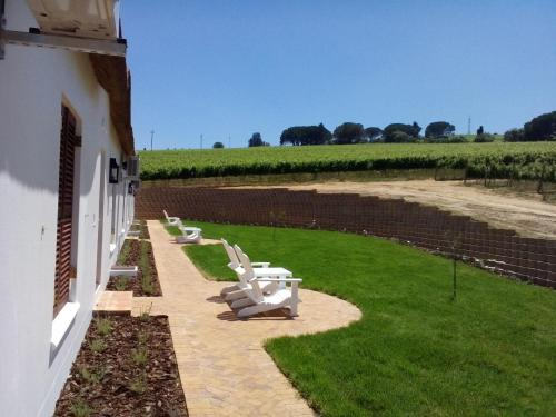Aaldering Vineyards & Wines Pty Ltd Photo