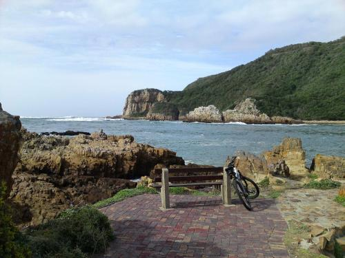 Interlude in Knysna Photo