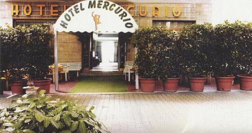 Picture of Hotel Mercurio