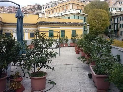 Bed & Breakfast B&B Il Bell'Antonio