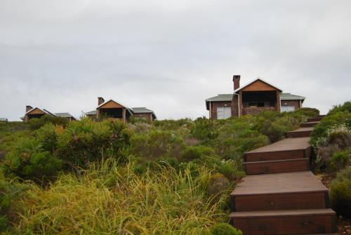 Blue Whale Resort Photo