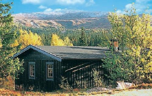 Holiday home Trysil J