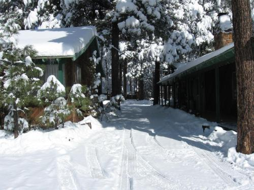 TimberLodge Inn Photo