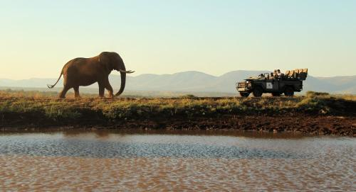 Thanda Safari Photo