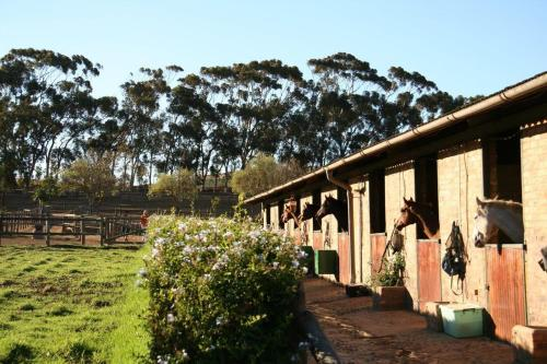 Alba Guest Farm Photo