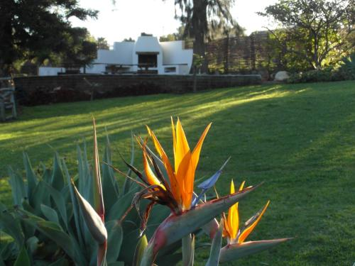 Marula Lodge Photo