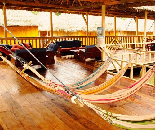 Amazon Dolphin Lodge Photo
