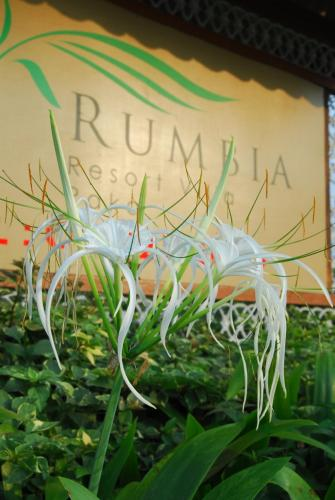Rumbia Resort Villa Paka