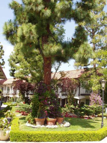 Laguna Hills Lodge-Irvine Spectrum Photo
