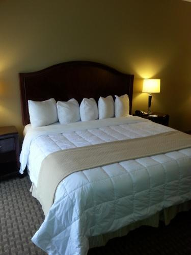 Quality Inn & Suites Houston photo 18