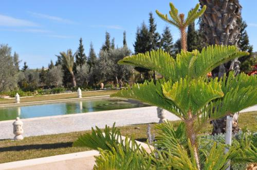 Ecolodge Dar Zitouna Photo