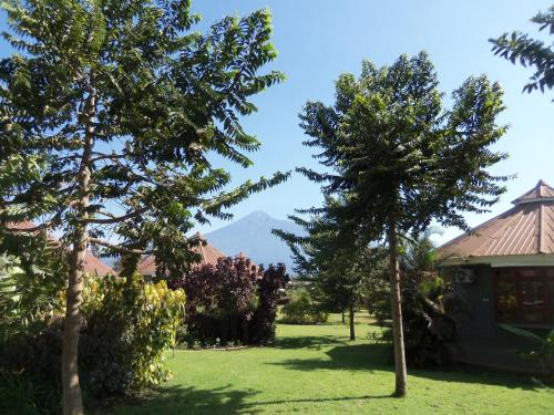 Planet Lodge - arusha -