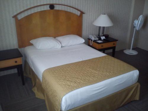 Best Western Centro Monterrey Photo