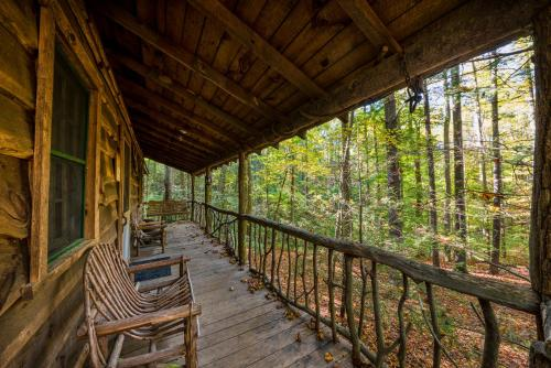Cabin Fever - Saluda Photo