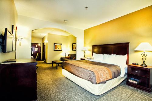 Comfort Inn & Suites Love Field – Dallas Market Center Photo