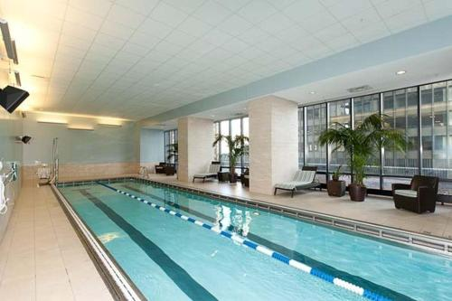 Aqua Chicago In Chicago Il Free Internet Swimming Pool Indoor Pool Outdoor Pool
