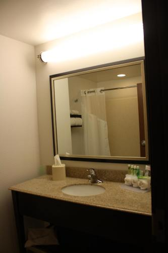 Holiday Inn Express Toledo North Photo